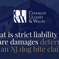 What is Strict Liability and How are Damages Determined in an NJ Dog Bite Claim?